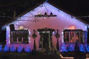 Paix de nuit ! dans Liens sapins-bleus-5298571-300x200
